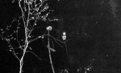 Darkthrone_Under_a_Funeral_Moon