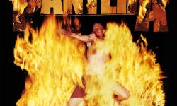 Pantera-Reinventing the Steel